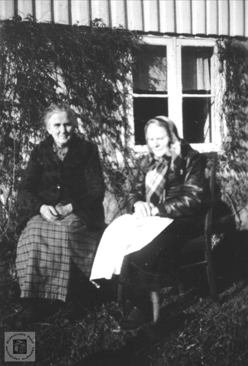 Dobbelportrett av Katrine og Salvine Usland, Øyslebø.