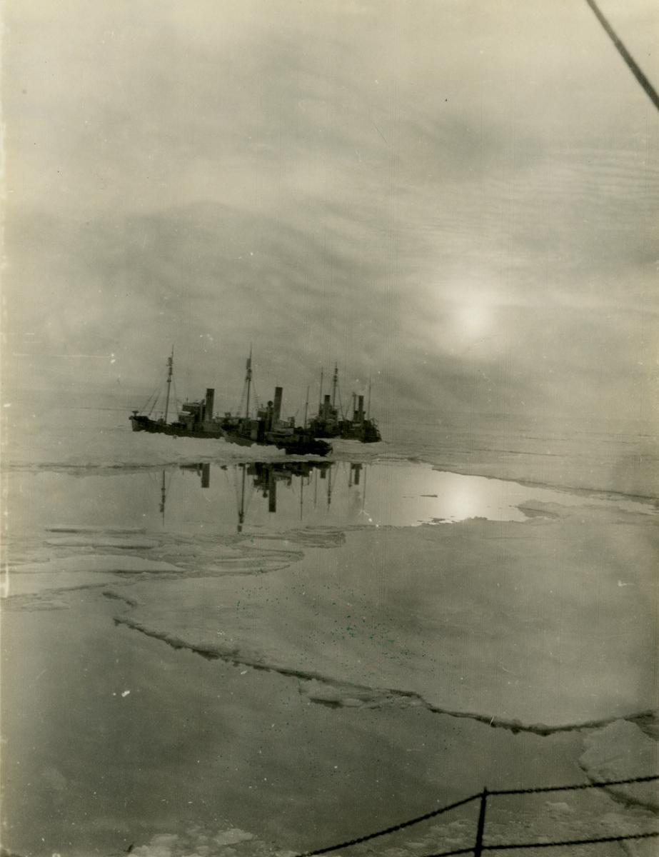 Hvalbåter i pakisen. - Fra fangsttur på Rosshavet.
