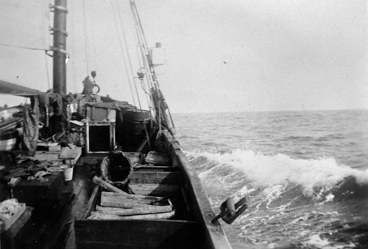 """Enligt tidigare noteringar: """"Fiskefartyget LL 59 """"Olive"""" av Grundsund på hemfärd efter avslutat fiske vid Shetlandsöarna.  Repro av foto tillhörande Ernst Gullman""""."""