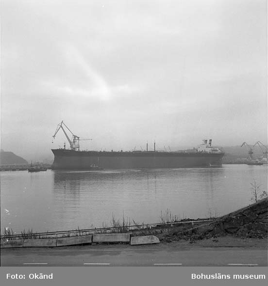 234 T/T Norse King i Byfjorden.