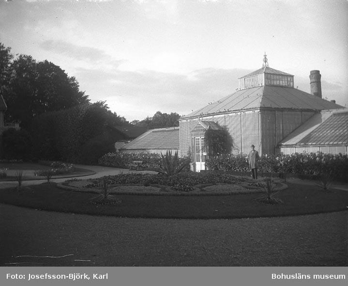 Finklädd man framför ett av växthusen i Trädgårdsföreningen, Göteborg
