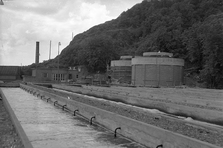 """Enligt notering: """"U-a Reningsverk 15/7 1949""""."""