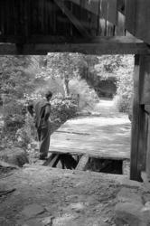 Tureborg förfaller, 1949