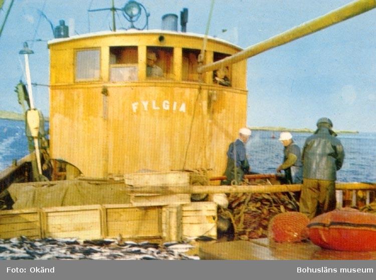 """Tryckt text på kortet: """"Fylgia"""". """"Bohuslän. Makrillfiske"""". Notering på kortet: """"Från Fisketången. 1 AUG. 1959 14 AUG. 1959""""."""