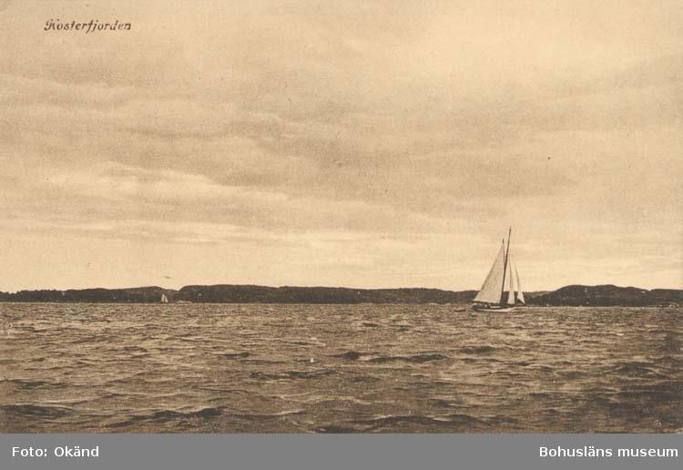 """Tryckt text på kortet: """" Kosterfjorden. """" """"Förlag: Larssons Bok, Musik- & Pappershandel, Strömstad."""""""