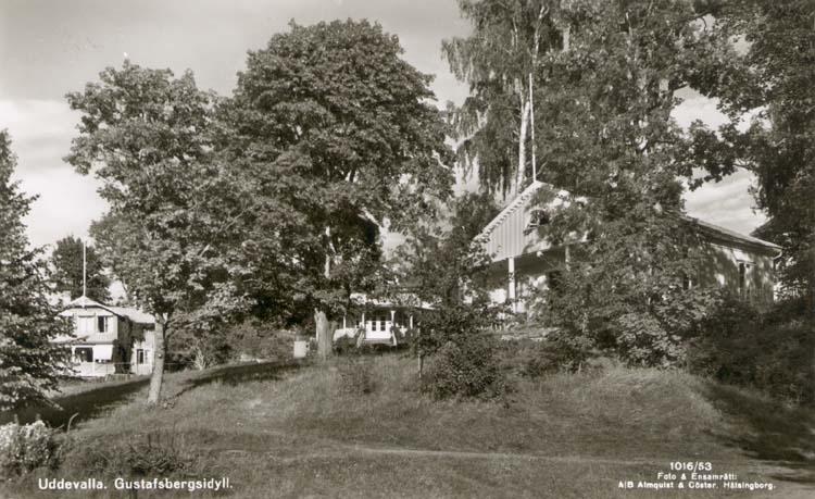 """Tryckt text på kortet: """"Uddevalla Gustavsbergsidyll."""" Noterat på kortet: """"Gustavsberg Uddevalla."""" """"Sommarstugor so. om badhuset på vägen mot friluftsbadet."""