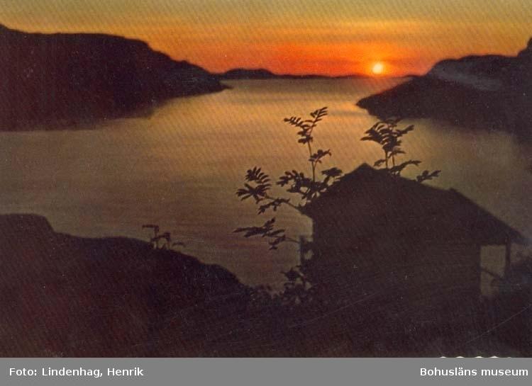 """Tryckt text på kortet: """"Bohuslän Solnedgång över fjorden."""" ::"""