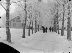 """Enligt fotografens noteringar: """"1914 Plåt från första världs"""