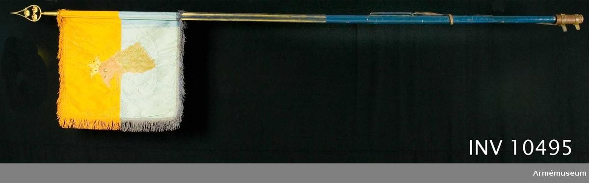 Grupp B.   Duk av taft, dubbel, delad i två halvor, den övre gul, den undre blå. Broderade emblem. På ena (inre) sidan Carl XV:s namnchiffer, dubbla C omkring XV, under sluten kunglig krona, allt i guld, kronan dessutom med foder i rött silke, pärlor i silver och stenar i blått och rött silke, plattsöm. På andra sidan Skånes sköldemärke, ett rött griphuvud med öppen krona. Gripen är broderad i olika röda silken med svarta konturer, vitt öga och krona gul med pärlor i silver och stenar i blått  och rött silke, allt i plattsöm. Kantad med sidenband och 60 mm  bred frans av silke i dukens färg.  Fäst med ? rader förgyllda spikar. Stång av furu, övre delen räfflad, nedre delen slät, målad svart med guld i räfflorna. Längd från spetsen till dukens  underkant 620 mm, till handgreppet 1380 mm, handgreppets nederkant 1590 mm och totalt 2680 mm. Löpande bärring på 220 mm lång stång av järn.Stigbygelholk av brunt läder, fäst med läderrem i stången. Spets av förgylld mässing, bladet med tre kronor ställda en och två inom enkel, lyrformig ram. Bladets längd är 183 mm. Holkens längd är 80 mm. Samhörande är ett fodral av brunt läder med ficka för bladet och rund knapp med skvadronsmärke. Längd 750 mm, bredd 170 mm.
