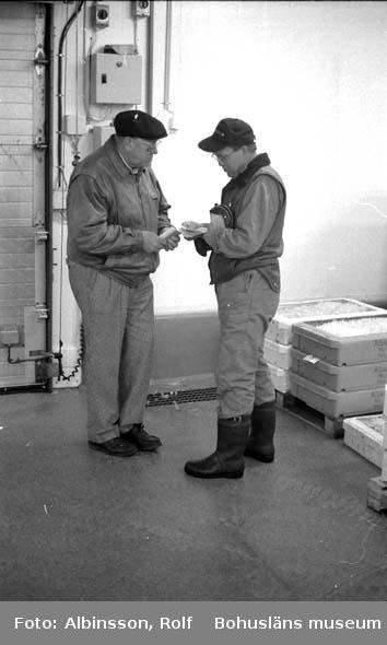 """Enligt fotografens noteringar: """"Bertil Abrahamsson och Gösta Karlsson.""""  Fototid: 1996-04-03."""