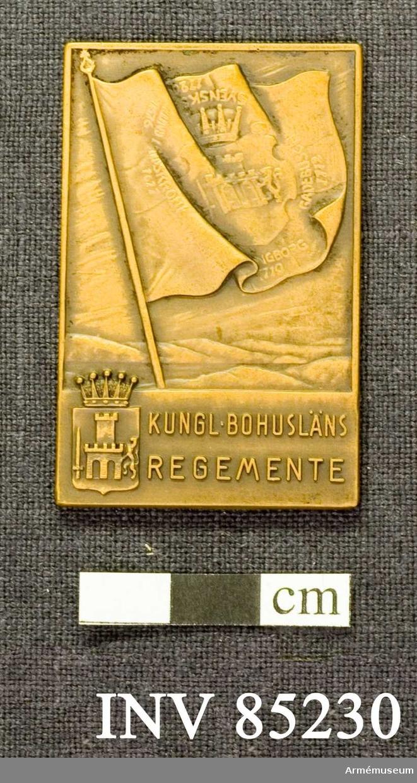Grupp: M II.  Kungliga Bohusläns regementes lilla förtjänstplakett i brons.