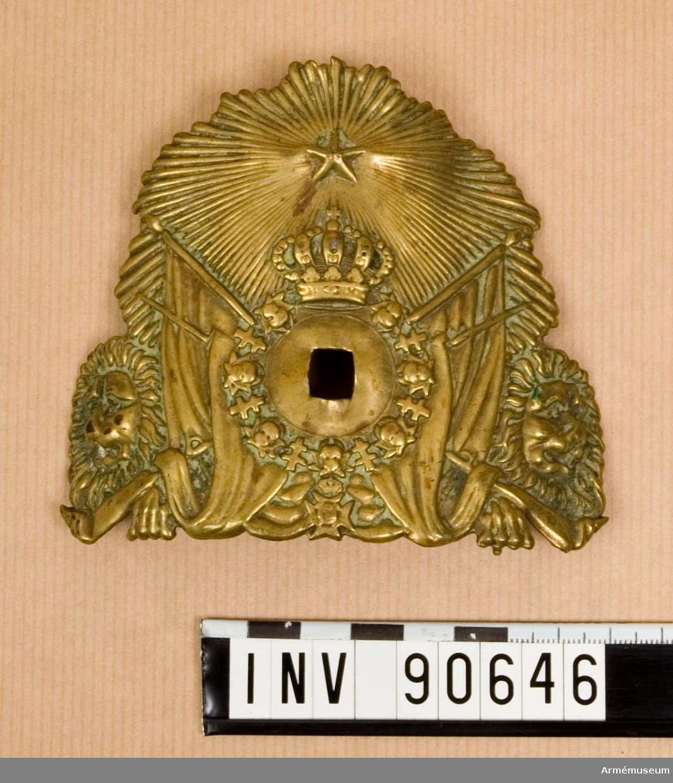 Vapenplåt m/1876