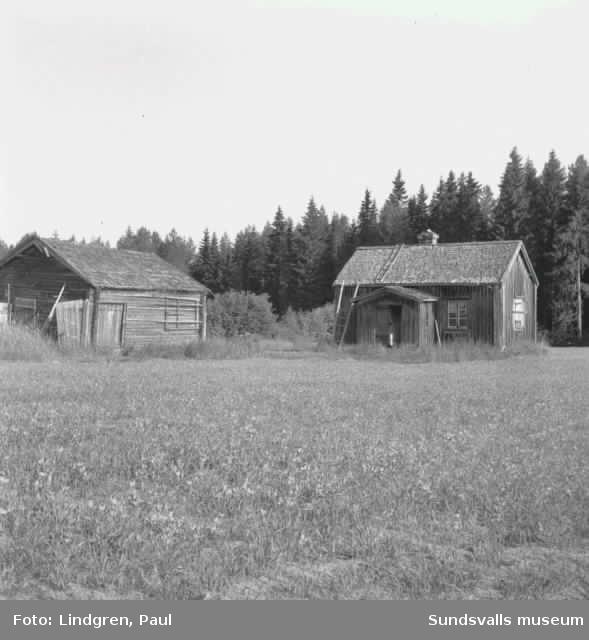 Båtmanstorpet på Alnö. Reportagebild från Sundsvalls Tidning.
