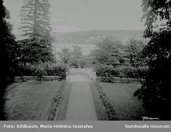 Trädgården till Svartviks herrgård. Baksidan med vy mot norr.