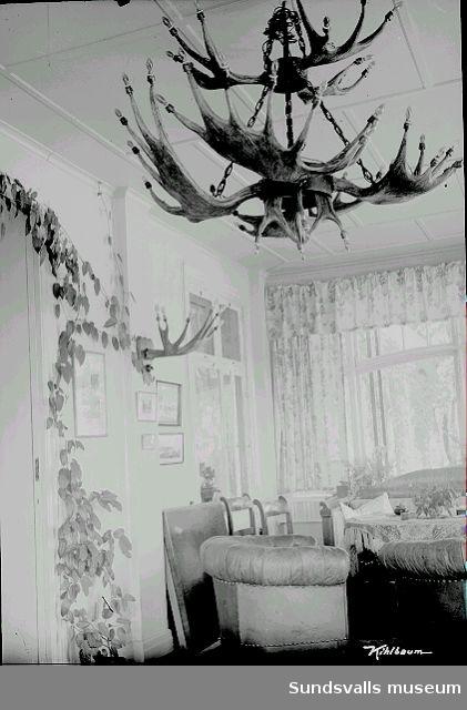 Rumsinteriör, taklampa av älghorn. Troligen Villa Marieberg.