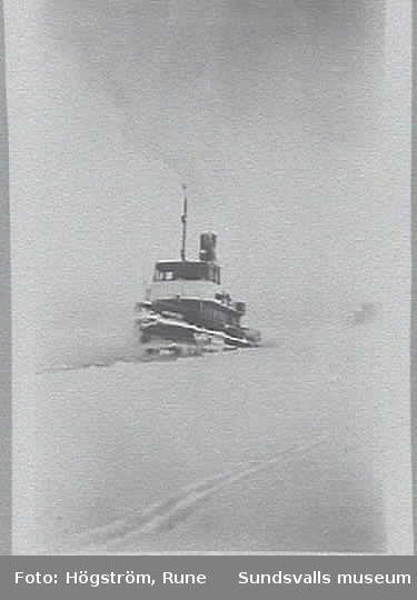 Hjälparen III bryter is  den kalla vintern 1956-57 i Sundsvalls hamn.