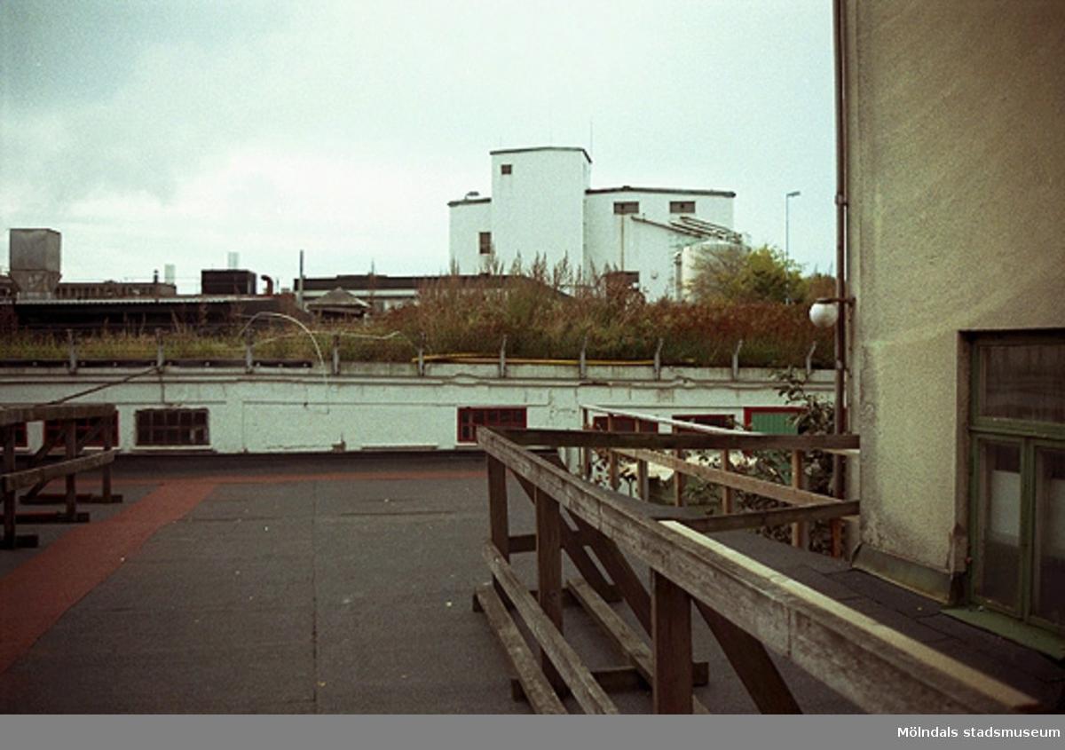 Papyrusområdet från ett tak. Till höger bostadshus fondtomt. Från öster. September-oktober 1998.