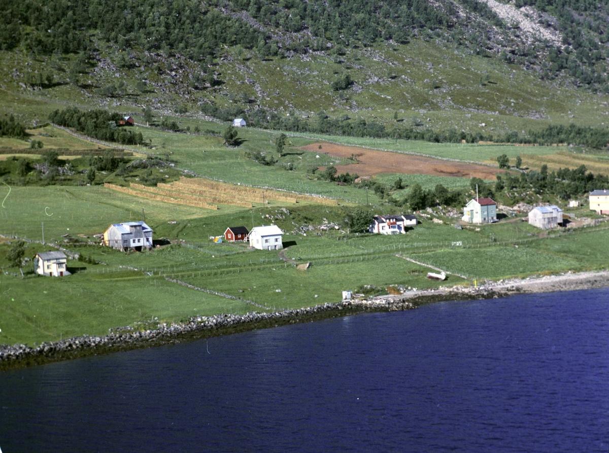 Flyfoto av bebyggelse på Aune.