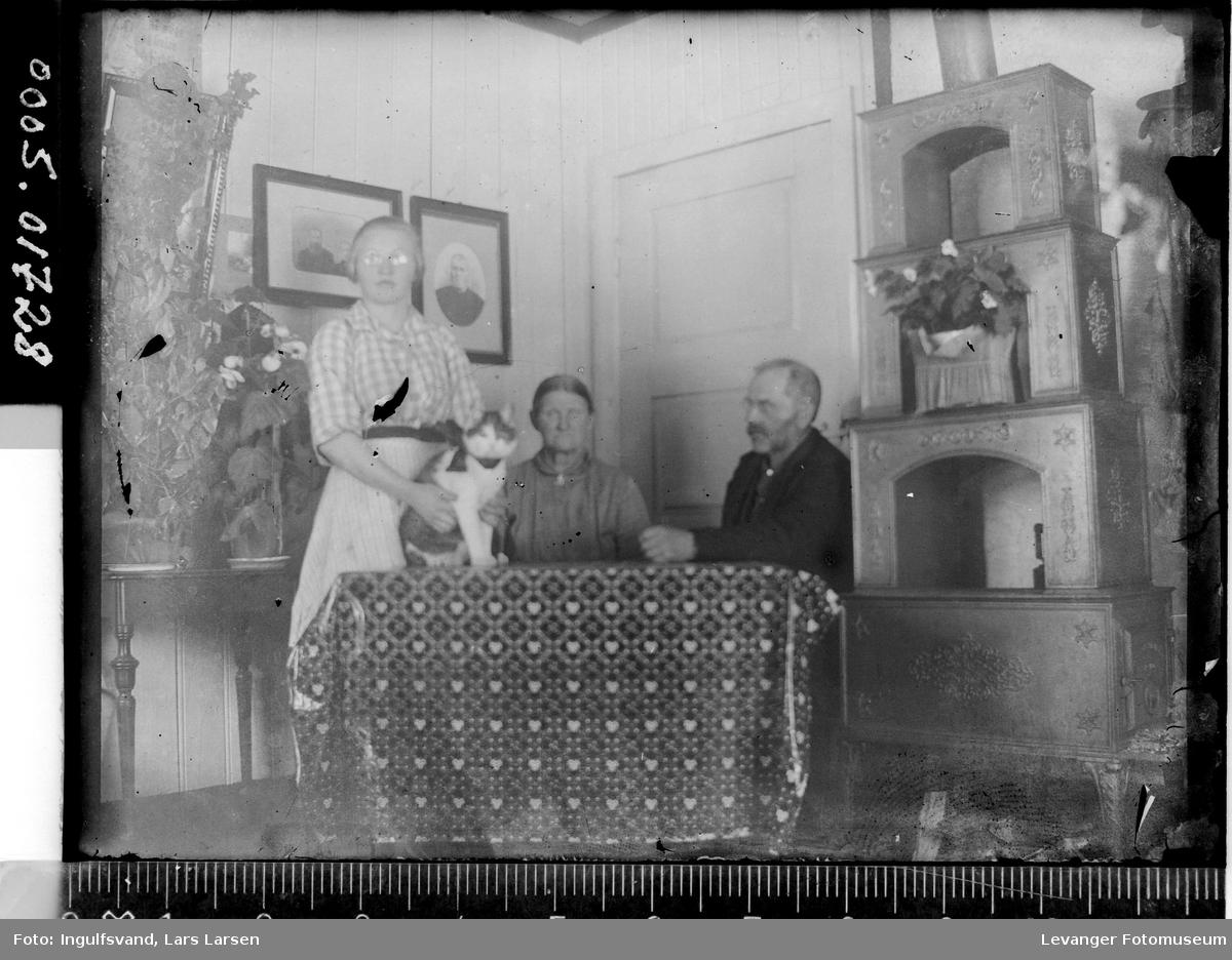 To kvinner og en mann i en stue.