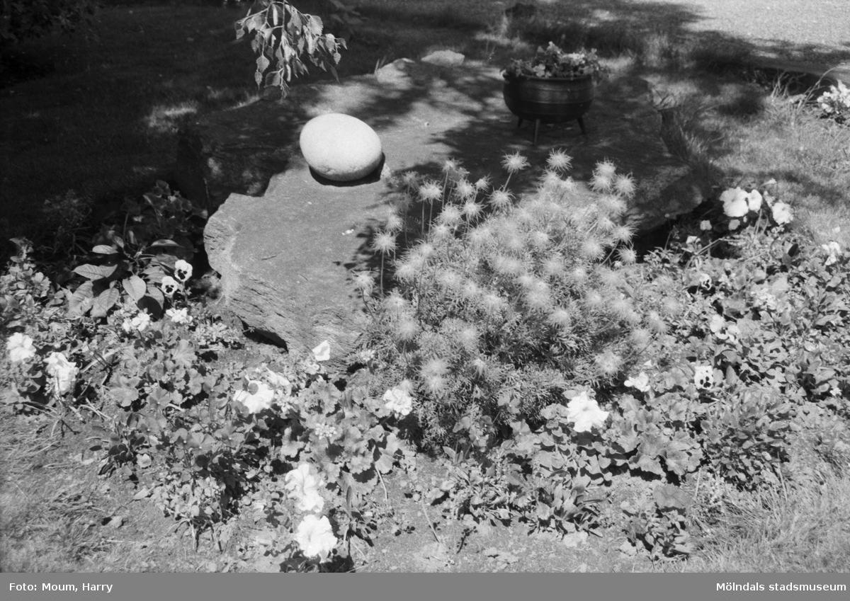 Torrekulla turiststation i Kållered, år 1984. Bild från trädgården. Fotografi taget av Harry Moum, HUM, Mölndals-Posten.