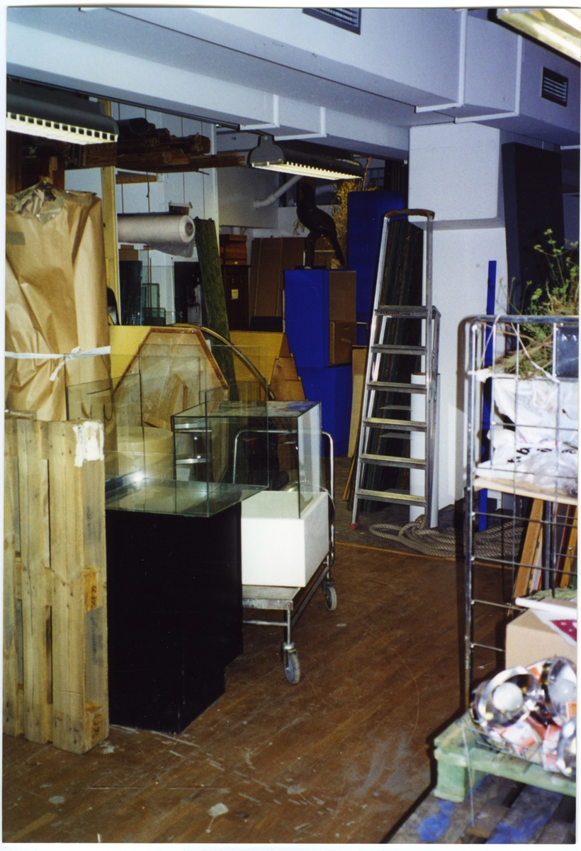 'Bildtext: ''Närmagasinet för utlåningsverksamhet i anslutning till monteringshallen.'' Utrymme med diverse föremål, 2 små glasmontrar, stege och monterad fågel bl.a. ::  :: Ingår i serie med fotonr. 7049:1-15 ''Fotodokumentation av mögelsanering och av lokaler i källaren.'''