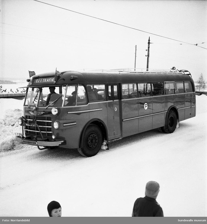 Bröderna Pettersson, ny buss på sträckan Sundsvall-Luleå.