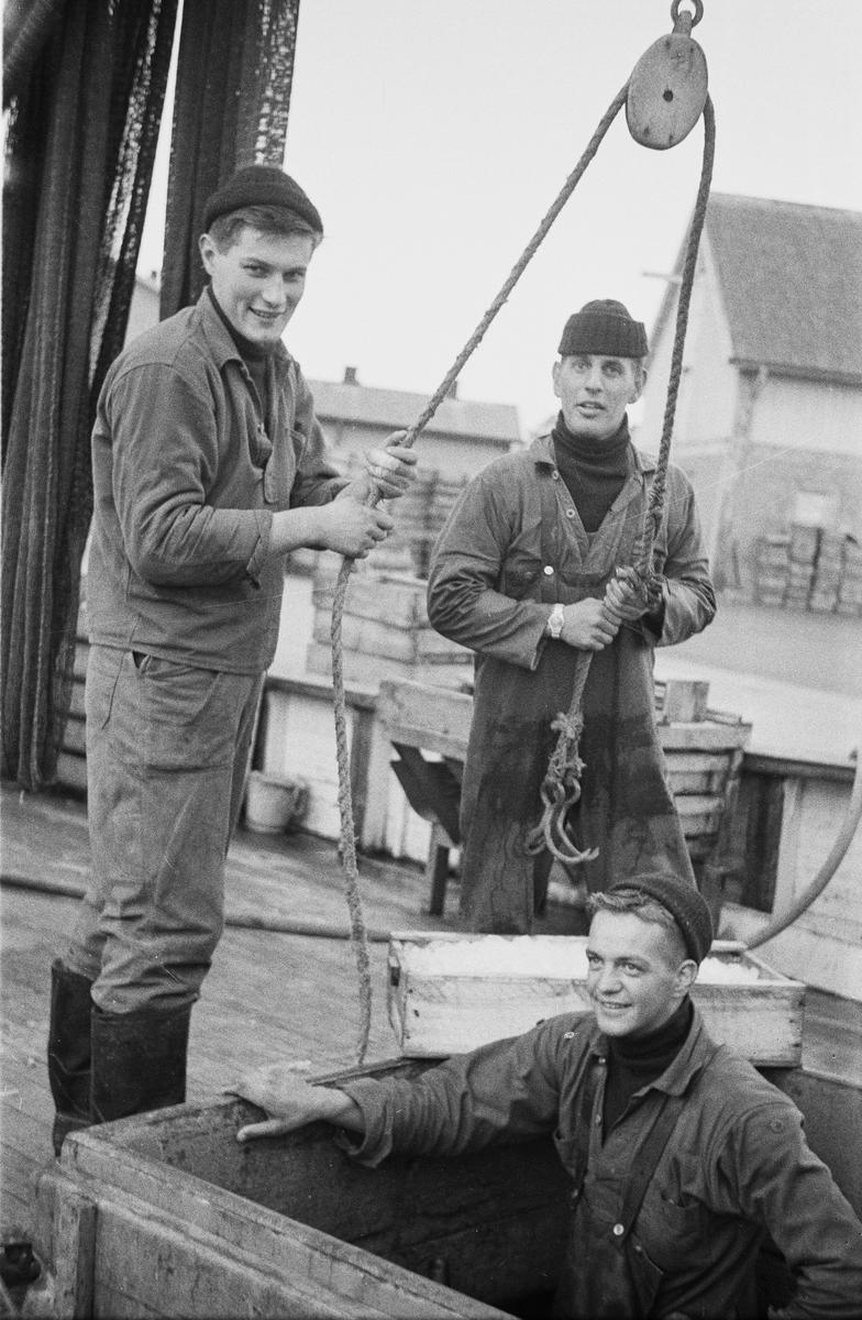 Övrigt: Räkfiskare på Smögen