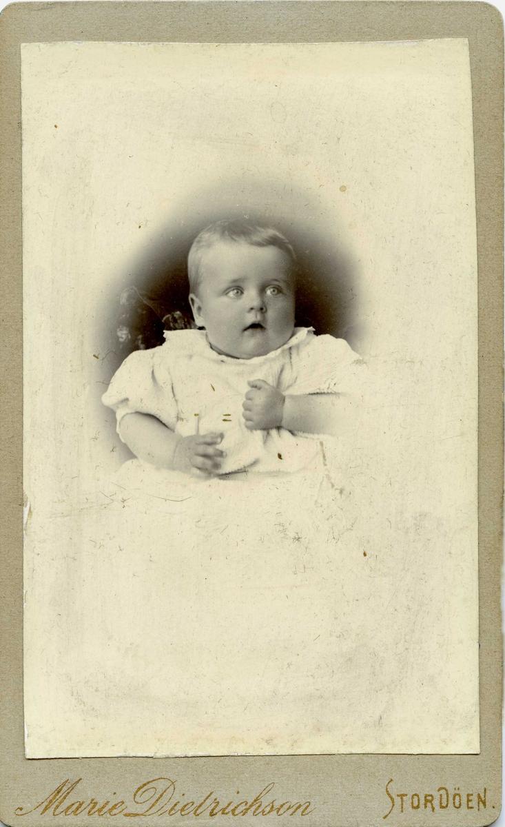 Portrett - Spebarn.