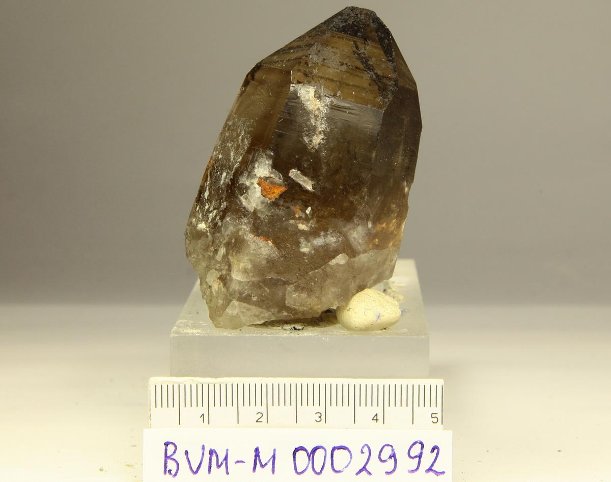 Singel røykkvartskrystall, skadet spiss.  Omtrent halvveis opp til Nasafjell sølvgruve (omtrent 5 km).