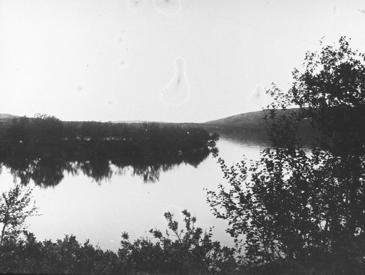 Et landskapsbilde fra Kirkenes. Vann. Fremst bjørketrær.