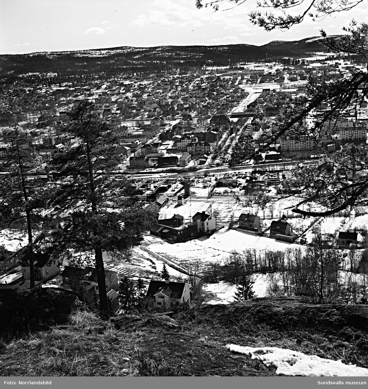 Stadsvy tagen från Norra berget och ner mot Västermalm med Västra Allén mitt i bild. Närmast syns de gamla villorna längst bort på Ludvigsbergsvägen och Repslagarevägen.