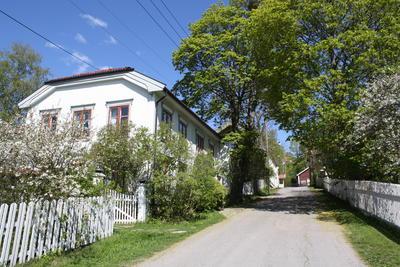 Hus og hager i Storgata, Øvrebyen, i vårblomstring. Foto/Photo