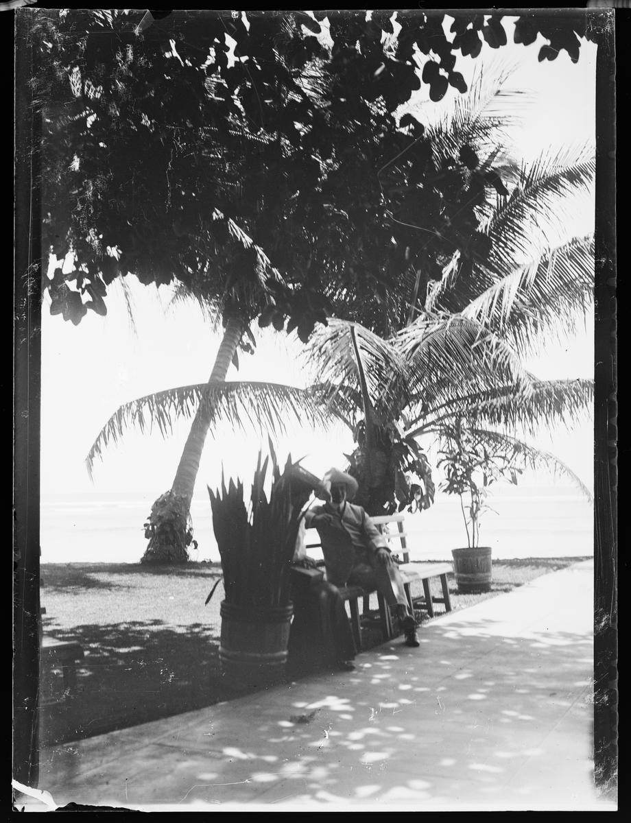 En mann og en dame sitter på en benk i skyggen under palmer.