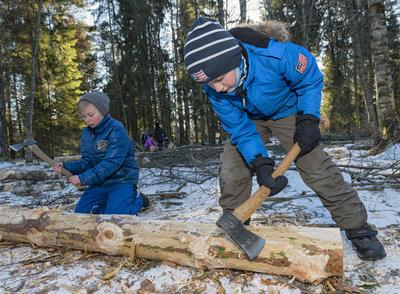 Skoleelever under temadagen Fra stubben til tømmervelta 15/2 2016. Foto/Photo