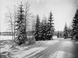 Diapositiv, fönsterbild av vinterlandskap, troligen i Hedemo