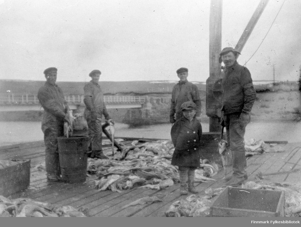 Bildet er fra et fiskebruk i Kiberg, fra venstre: Andreas H. Edvin P.,  Johan, Hjalmar, Jacob.
