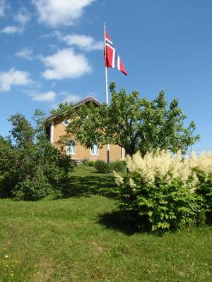 Flagget heist på Almenninga