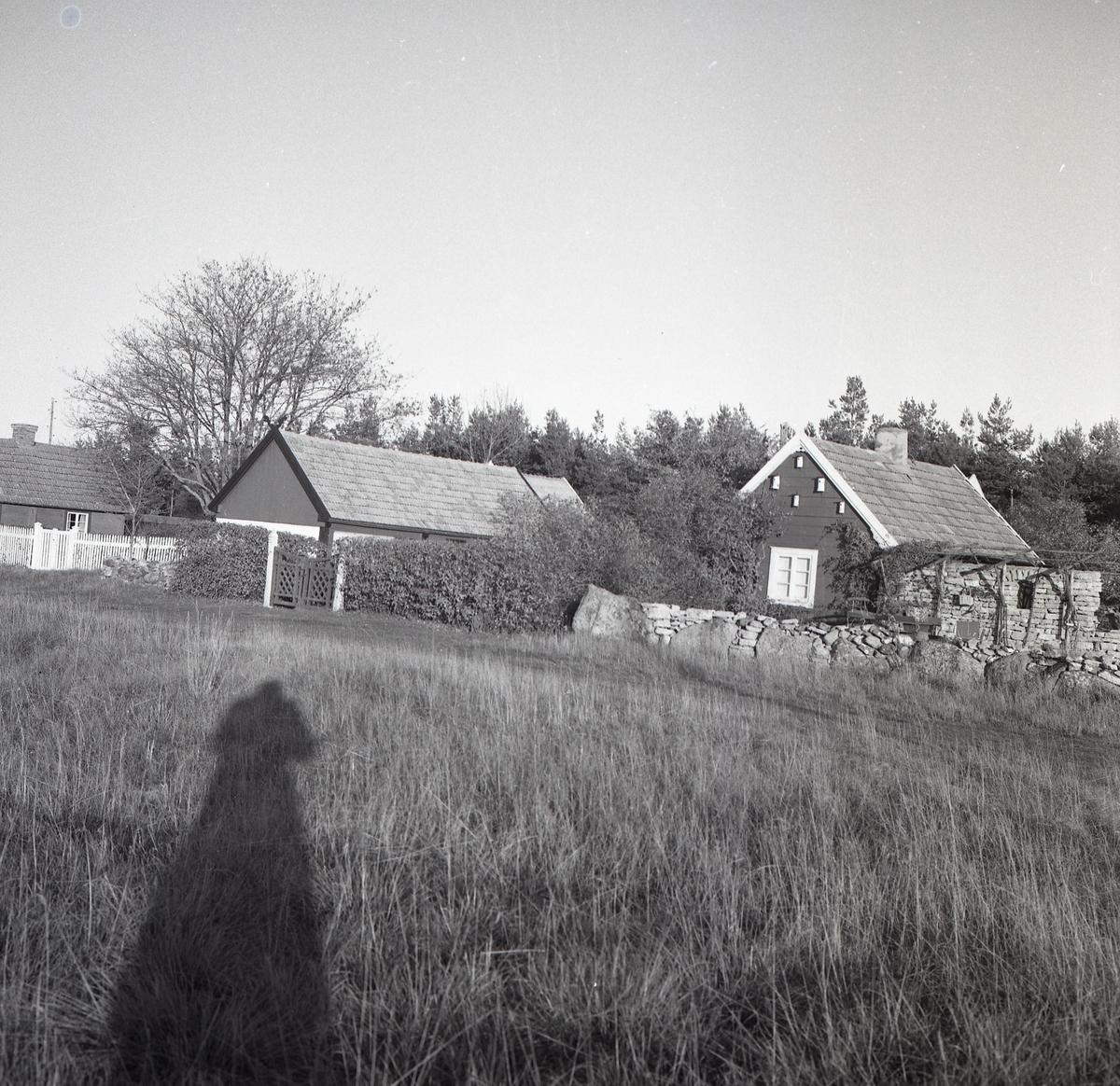 En gård som har en ekonomibyggnad och ett bostadshus.