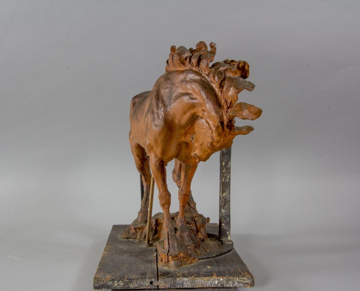 Häststudie till Pegasus, helfigur.