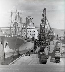 M/S Arizona vid kaj i Kalmar hamn. Hon levererades 1961-11-3
