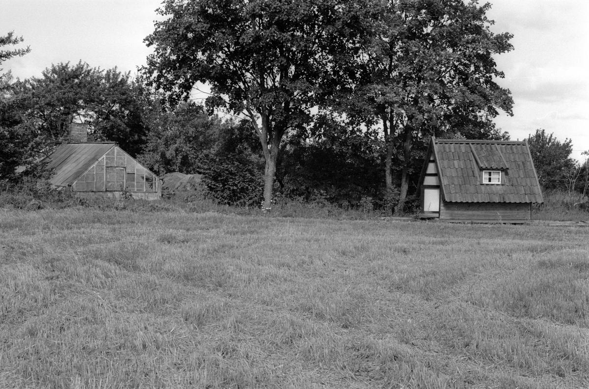 Växthus och fiskebod, Järsta 14:1, Tensta socken, Uppland 1978