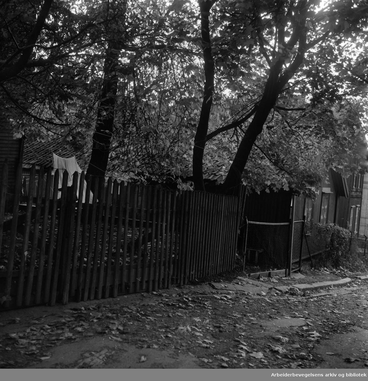 Langleiken 3, juni 1959. (Gaten ble borte ved saneringen av Enerhaugen i 1960-årene.)