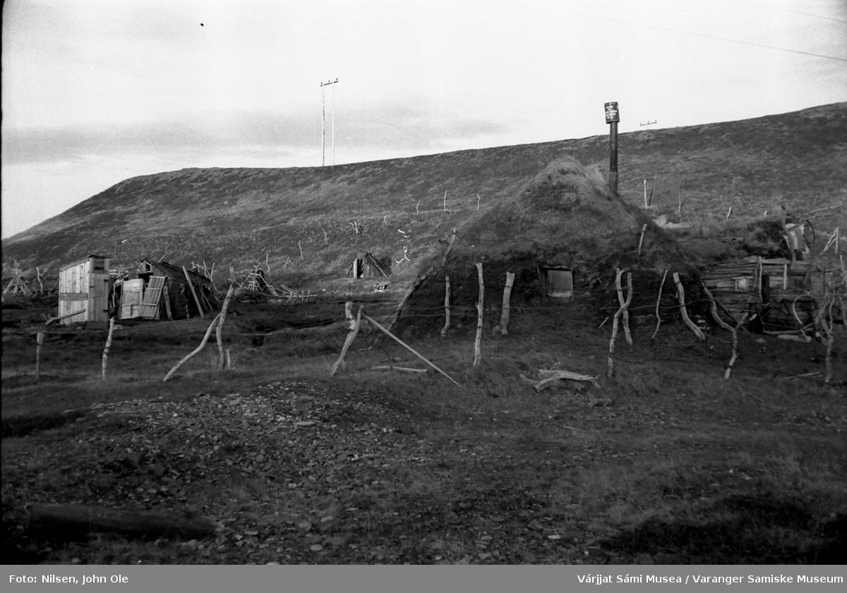 Gammer under en bergskråning. Amund Eikjoks ved veien opp mot Bergebydalen i Nesseby. 1967.