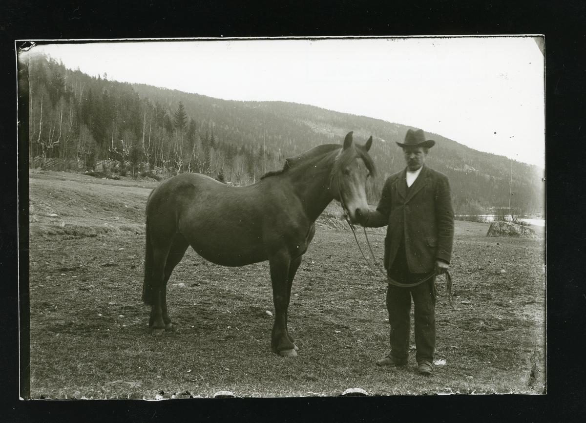 Tomas O. Langedrag med hesten sin.