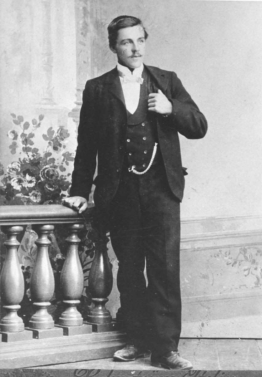 Nils Gustav Roos, Hybo.