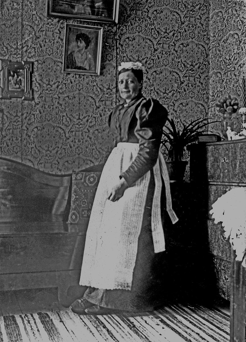 En okänd kvinna som står vid en soffa år 1894. Fotograf Alfred Bergendahl. Givare H Bergendahl.