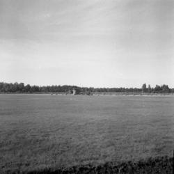 Foto av en stor åker. I bakgrunden skymtar flera höstackar.