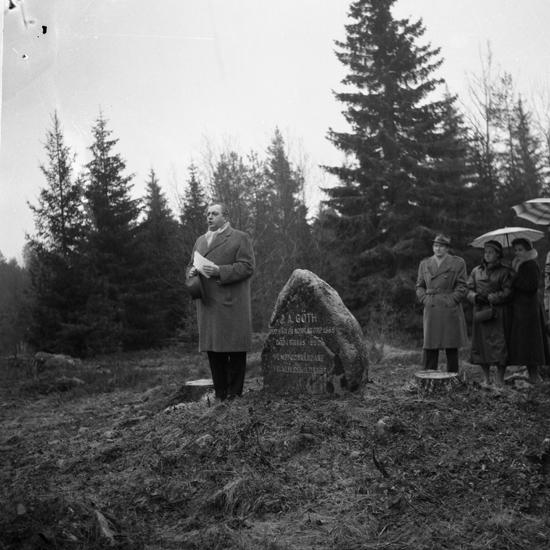 Skning: Sjss frsamling - Riksarkivet - Search the collections