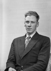 Foto av en man i kostym med slips.Midjebild. Ateljéfoto. S