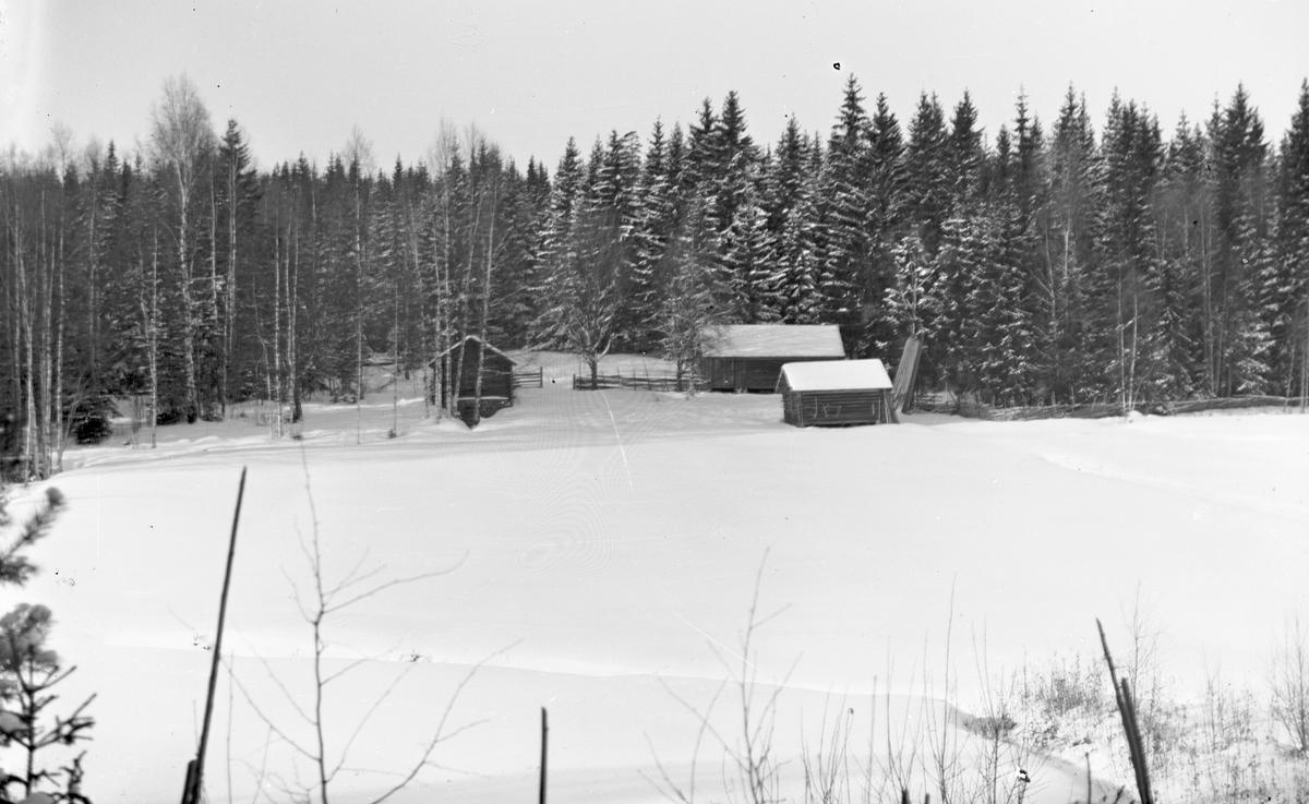"""Åsmundshyttans nummer 8:s fäbod """"Anders-Ols""""."""